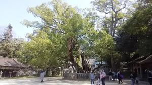 16大三島大山祗神社5