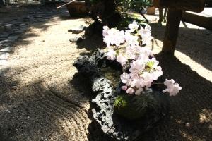 八幡神社と小学校5