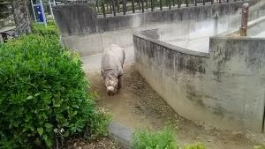 16砥部動物園7