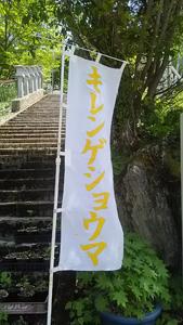 剣山の花2