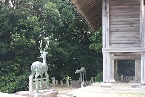宝生寺隣春日神社1