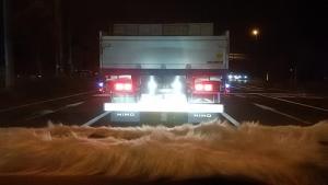 トラックの後ろ2