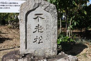 16曼荼羅寺9