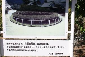 16曼荼羅寺10