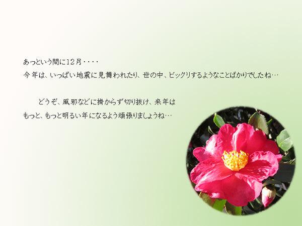 12gatu.jpg