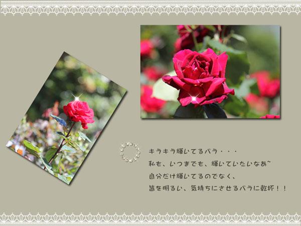 zibun-3.jpg