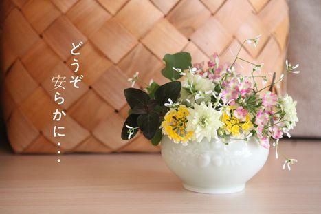 IMG_3310 - コピー