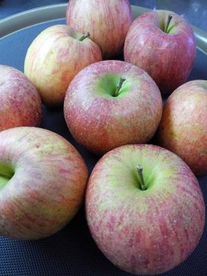 20161223差し入れリンゴ