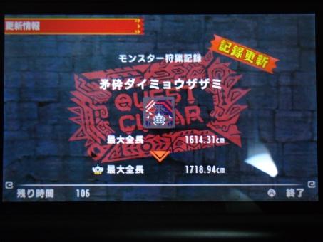 DSC01138_R.jpg