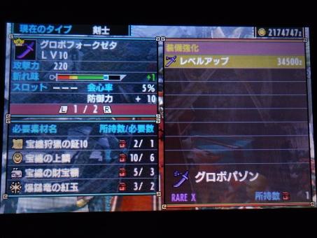 DSC01199_R.jpg