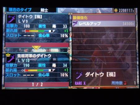 DSC01208_R.jpg