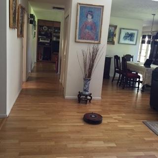 Roombaくん