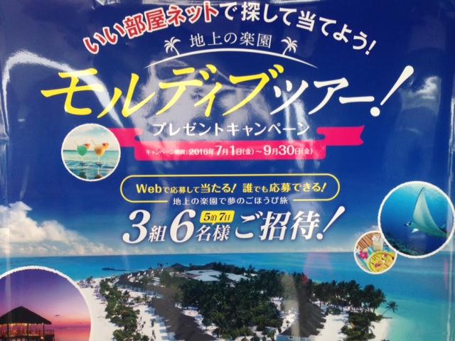 morujibu2.jpg