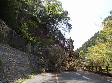 熊本県の災害災害状況写真1