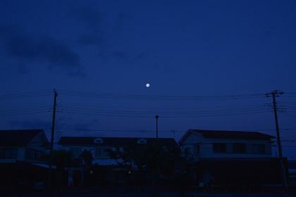 20161116_0113_1.jpg