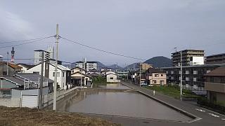 20160617野田池(その1)