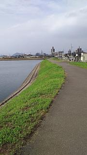 20160617野田池(その2)