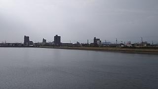20160617野田池(その6)