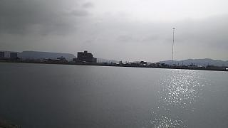 20160617野田池(その7)