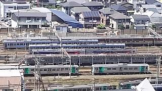 20160618花樹海(その10)