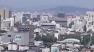 20160618花樹海(その14)