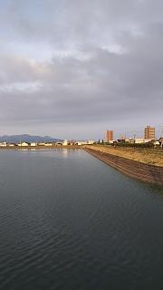 20160618野田池他(その4)