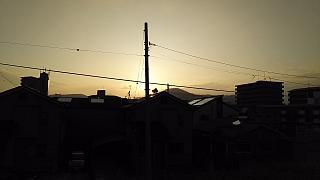 20160618野田池他(その7)