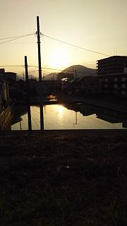 20160618野田池他(その8)