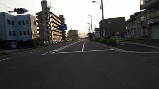 20160618野田池他(その11)