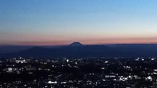 20190729朝の風景(その3)