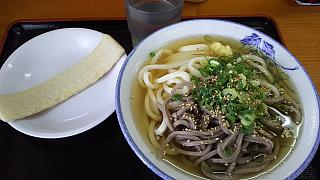20160801大島(その1)