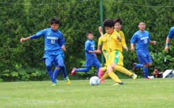 Baidu IME_2016-6-20_15-19-16