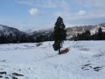 棚田の雪景色