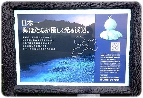 sayomaru18-737.jpg