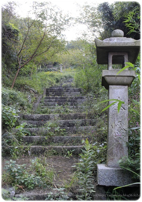 sayomaru18-850.jpg