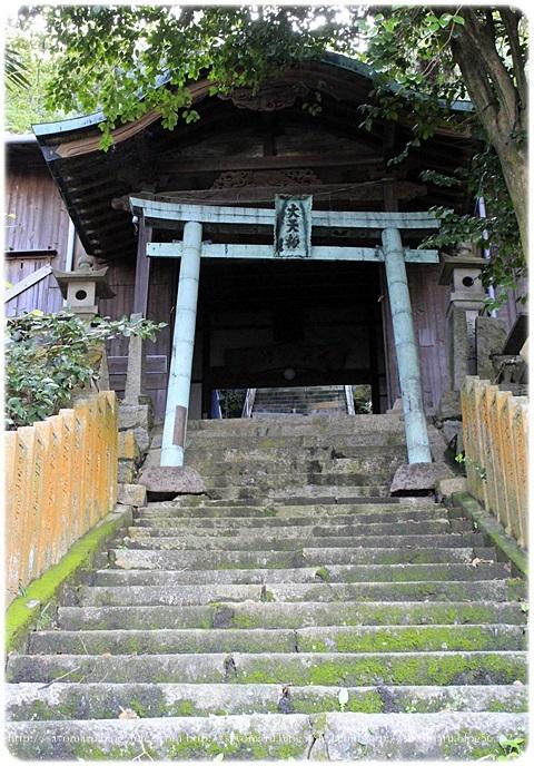 sayomaru18-852.jpg