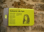 Cabaret du Lys