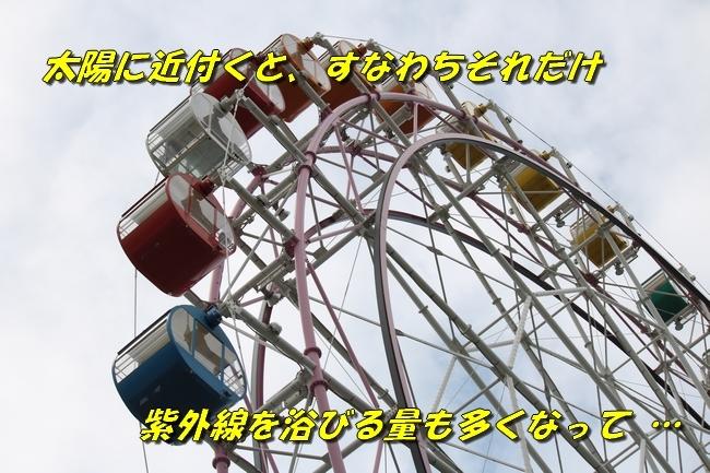 1_201611032031383b2.jpg