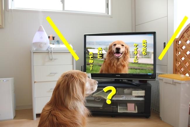 tv鑑賞 002