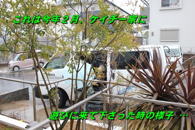 雪遊び反省会 063