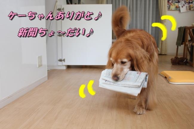新聞配達 041