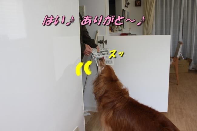 新聞配達 052