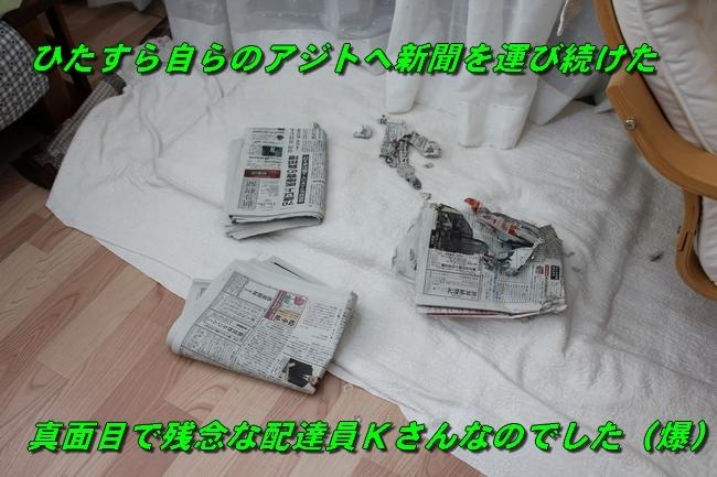 新聞配達 060