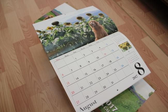 カレンダー2017 004