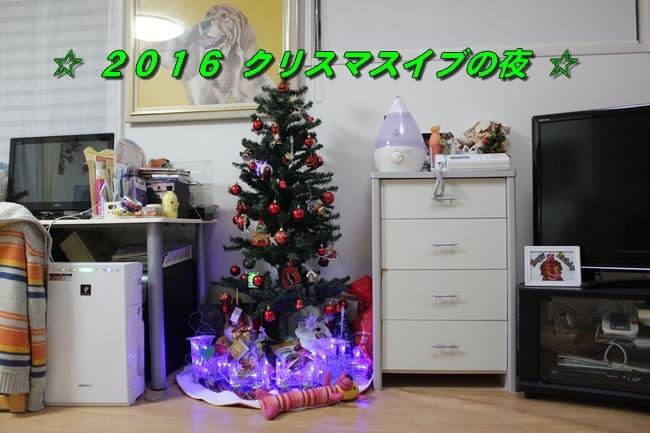 ケイチーサンタ 022