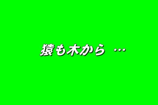 4_20161207202300b6b.jpg
