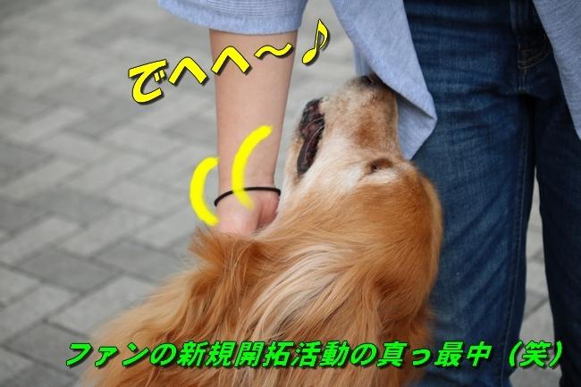 IMG_6859.jpg