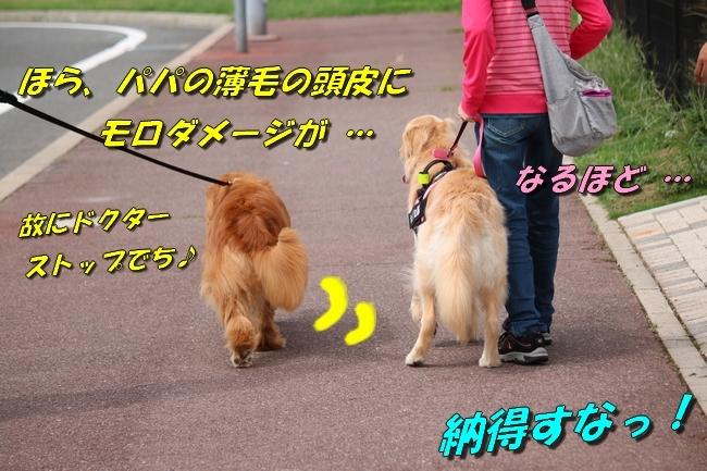 IMG_6922.jpg