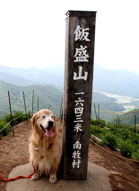 レンゲツツジの飯盛山(4)