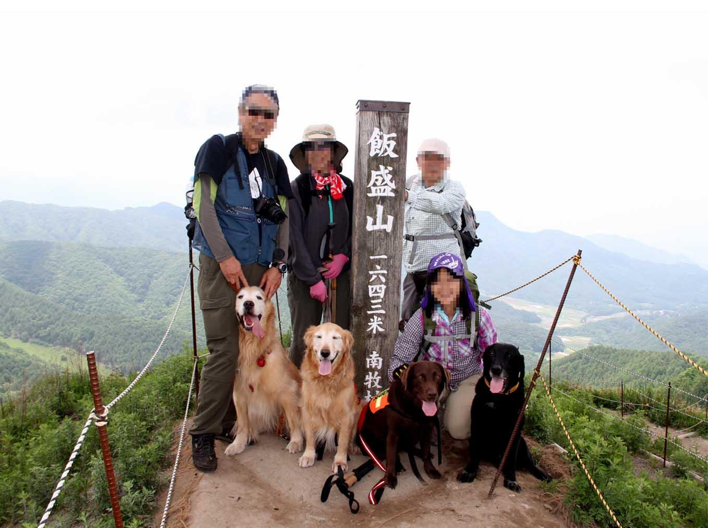 レンゲツツジの飯盛山(5)